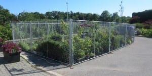 Chain link panels garden centre